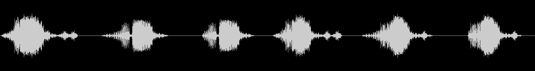 さまざまな短いライオンのar音の要素の未再生の波形
