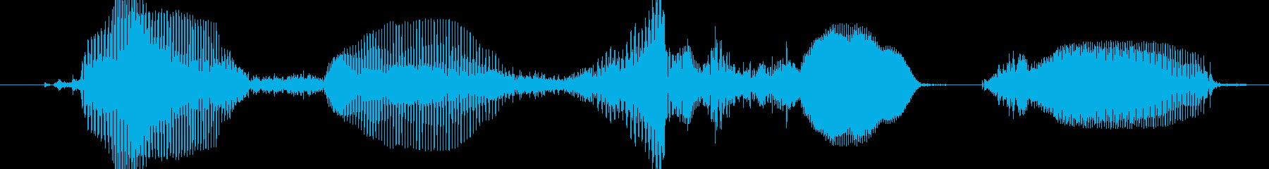 好評配信中の再生済みの波形