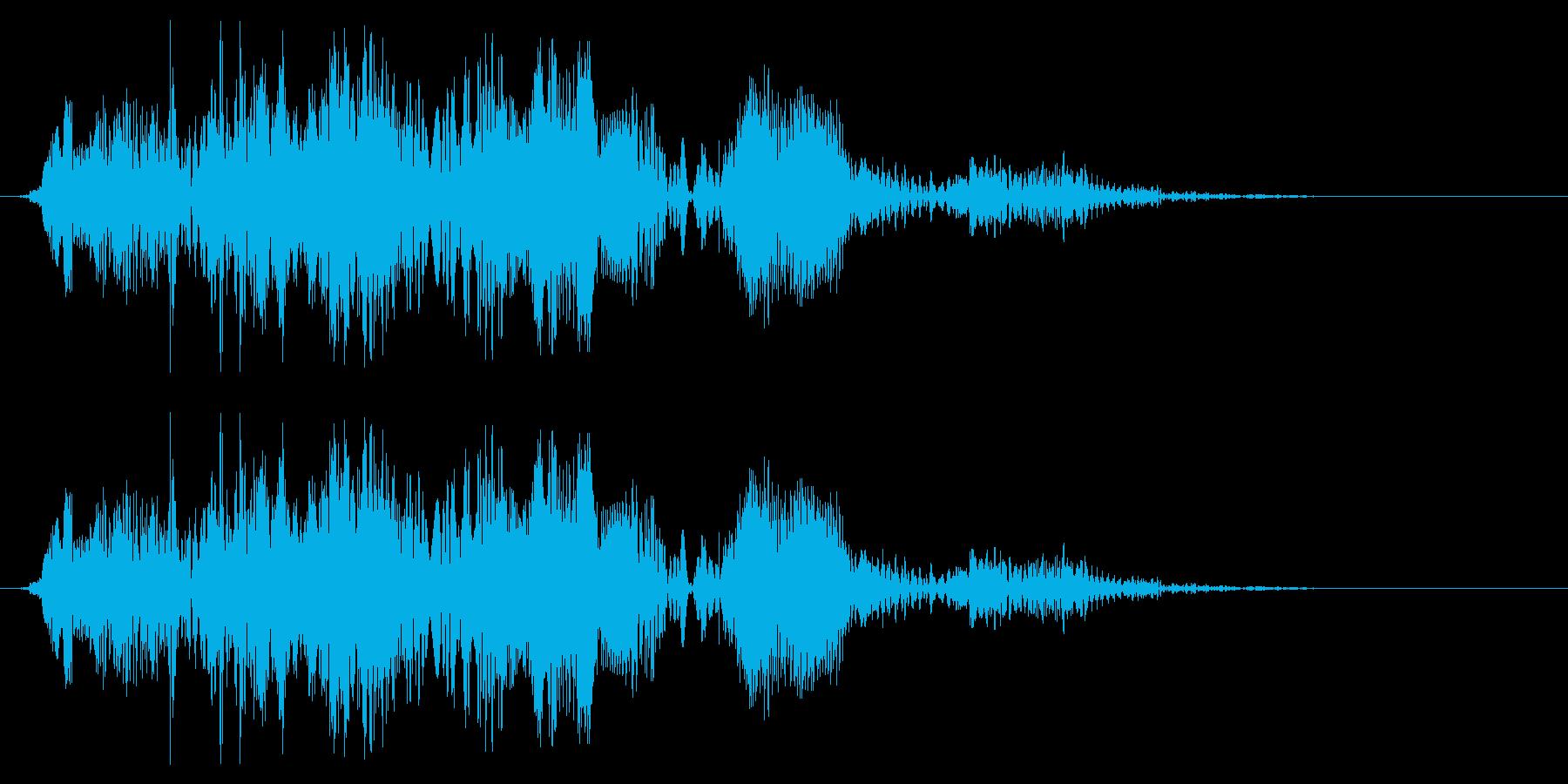 チュチュキュワッワ(鳴き声系)の再生済みの波形