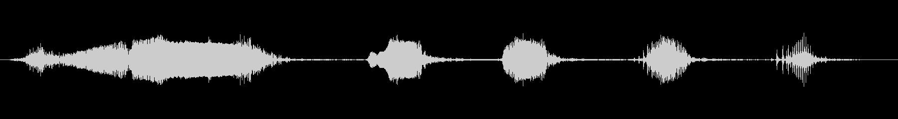マイナ・バード・ラフの未再生の波形