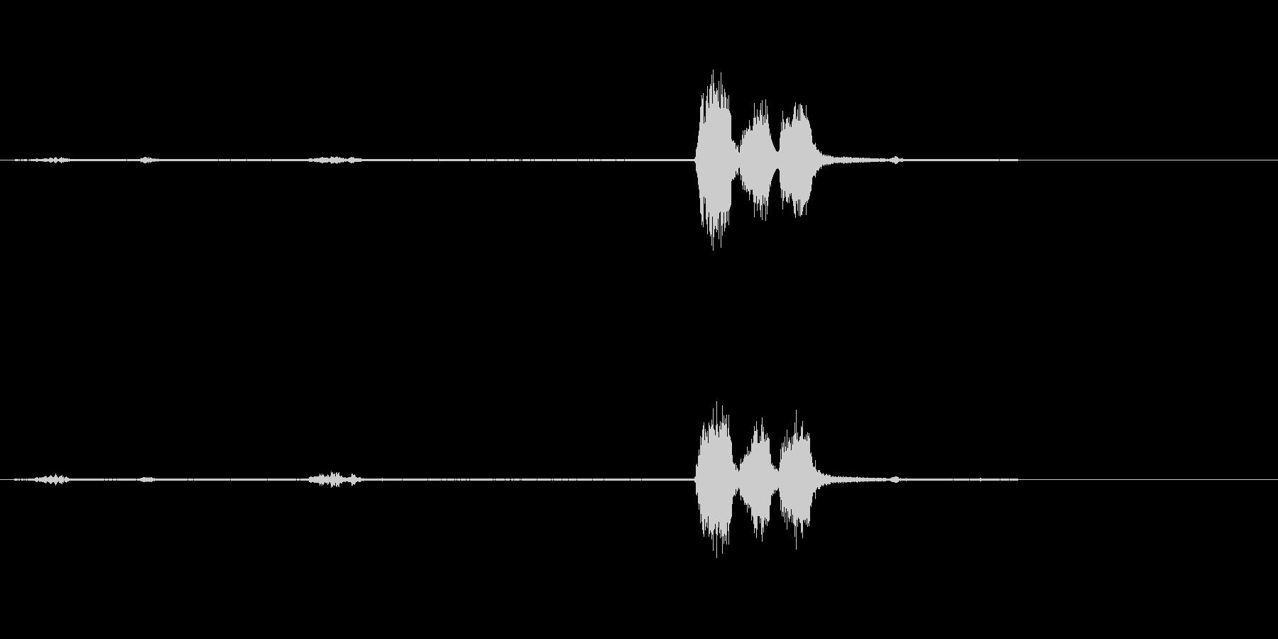 ジェイ-鳥の未再生の波形