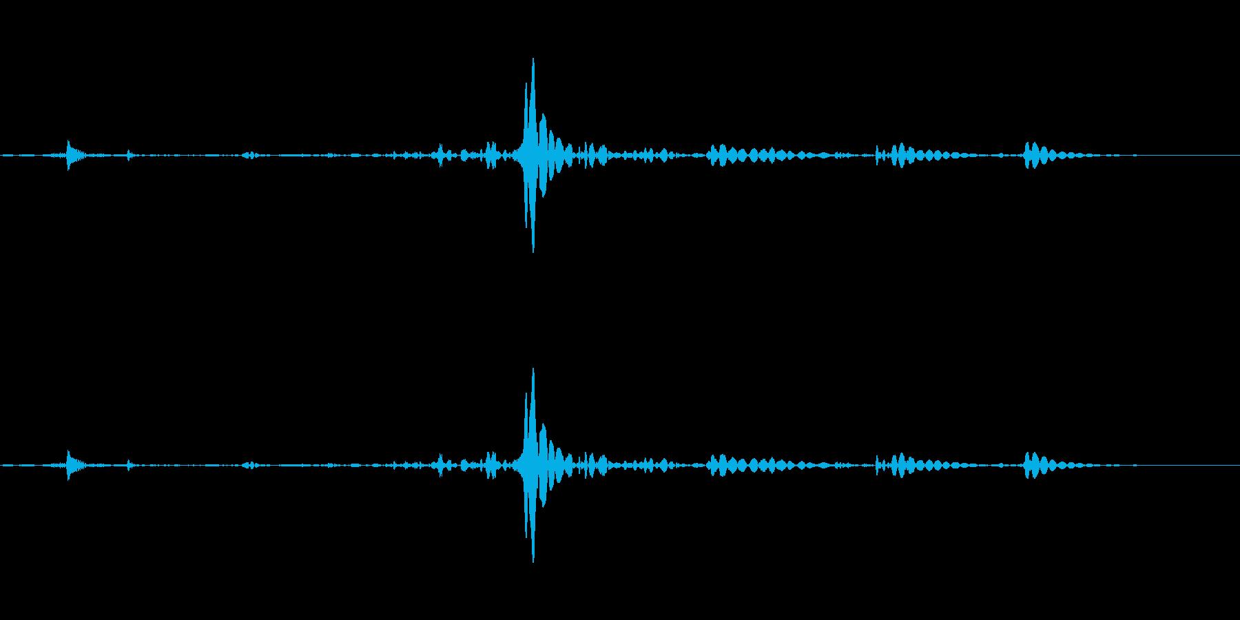水の抜ける音・飲み込む音の再生済みの波形