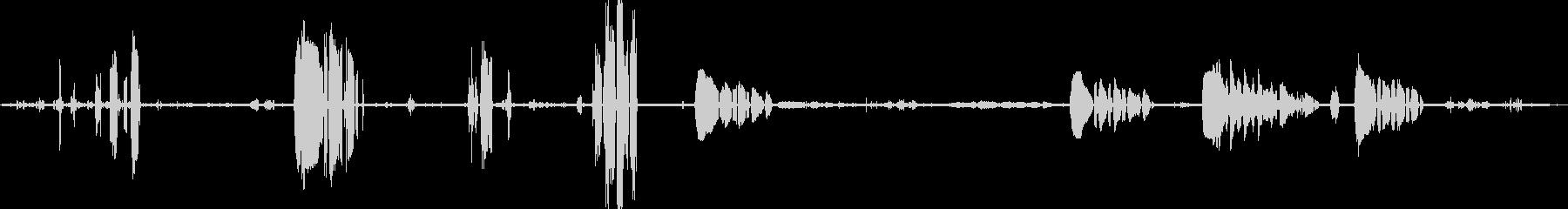ペンギン、ゲントー、バード; DI...の未再生の波形