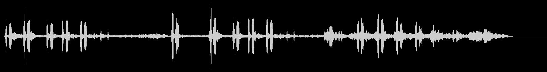 カッコウの未再生の波形