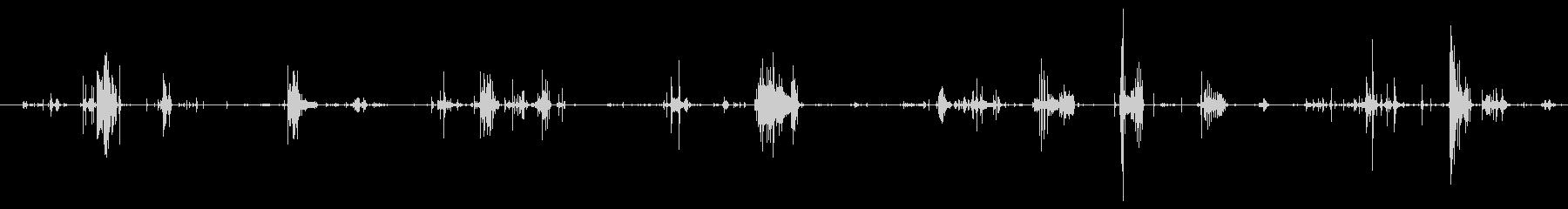 鳴き声 デスバーブルロング01の未再生の波形
