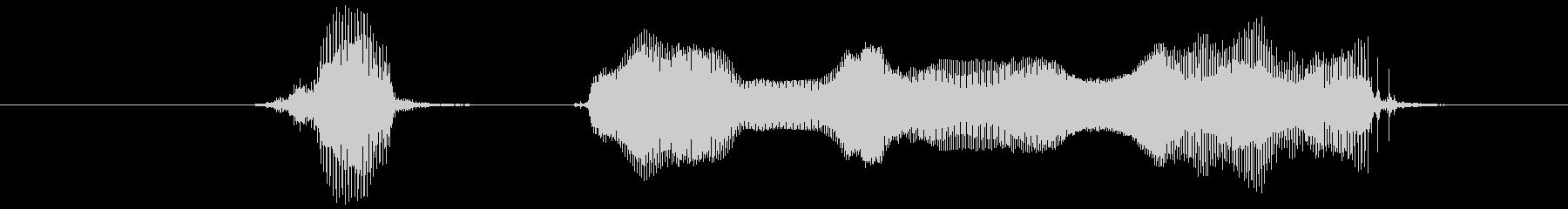 ハッピーニューイヤーの未再生の波形
