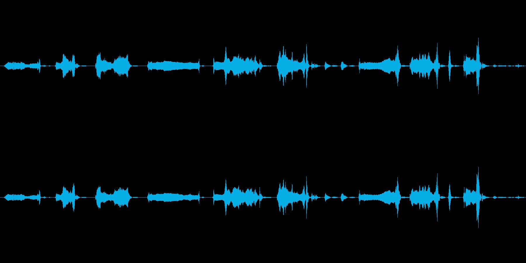 犬 GSP ワイン・ヘビー05の再生済みの波形