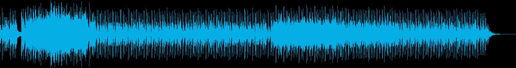 ムソルグスキー 組曲「展覧会の絵」5の再生済みの波形