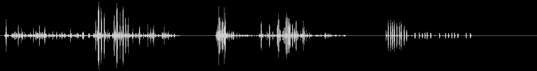 猿、チンパンジーの喘ぎ、Xボーカルの未再生の波形