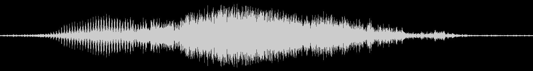 グロアザラシ、アシカ、セイウチの未再生の波形