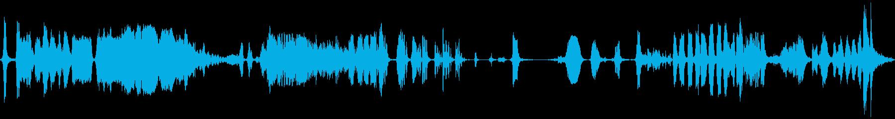 金属、鳴き;さまざまな遅い、神経の...の再生済みの波形