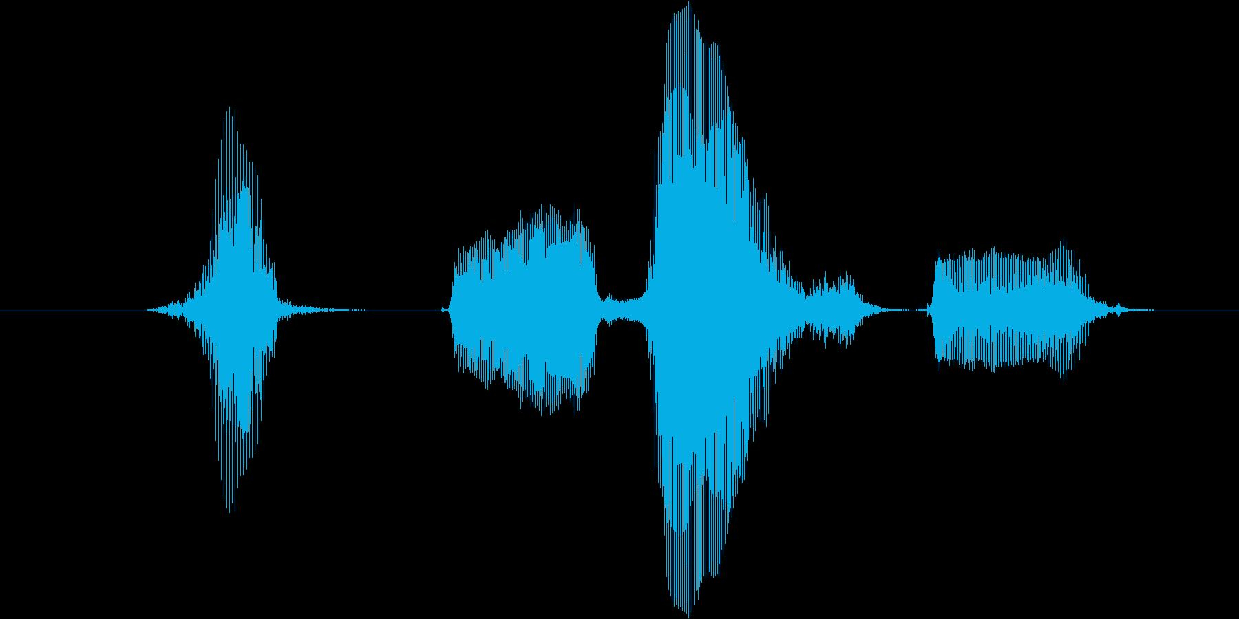 ハッピーバースデーの再生済みの波形