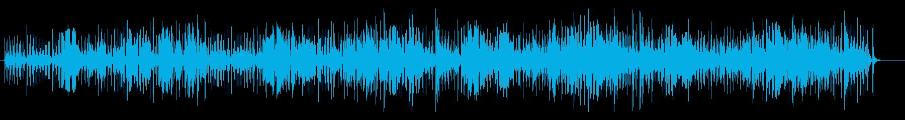 久高島の再生済みの波形