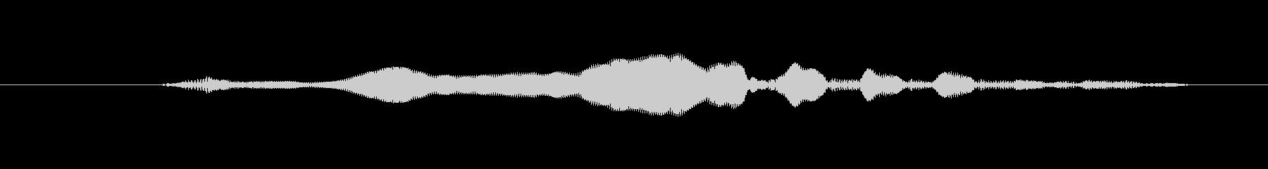 犬 GSP ワイントリル01の未再生の波形