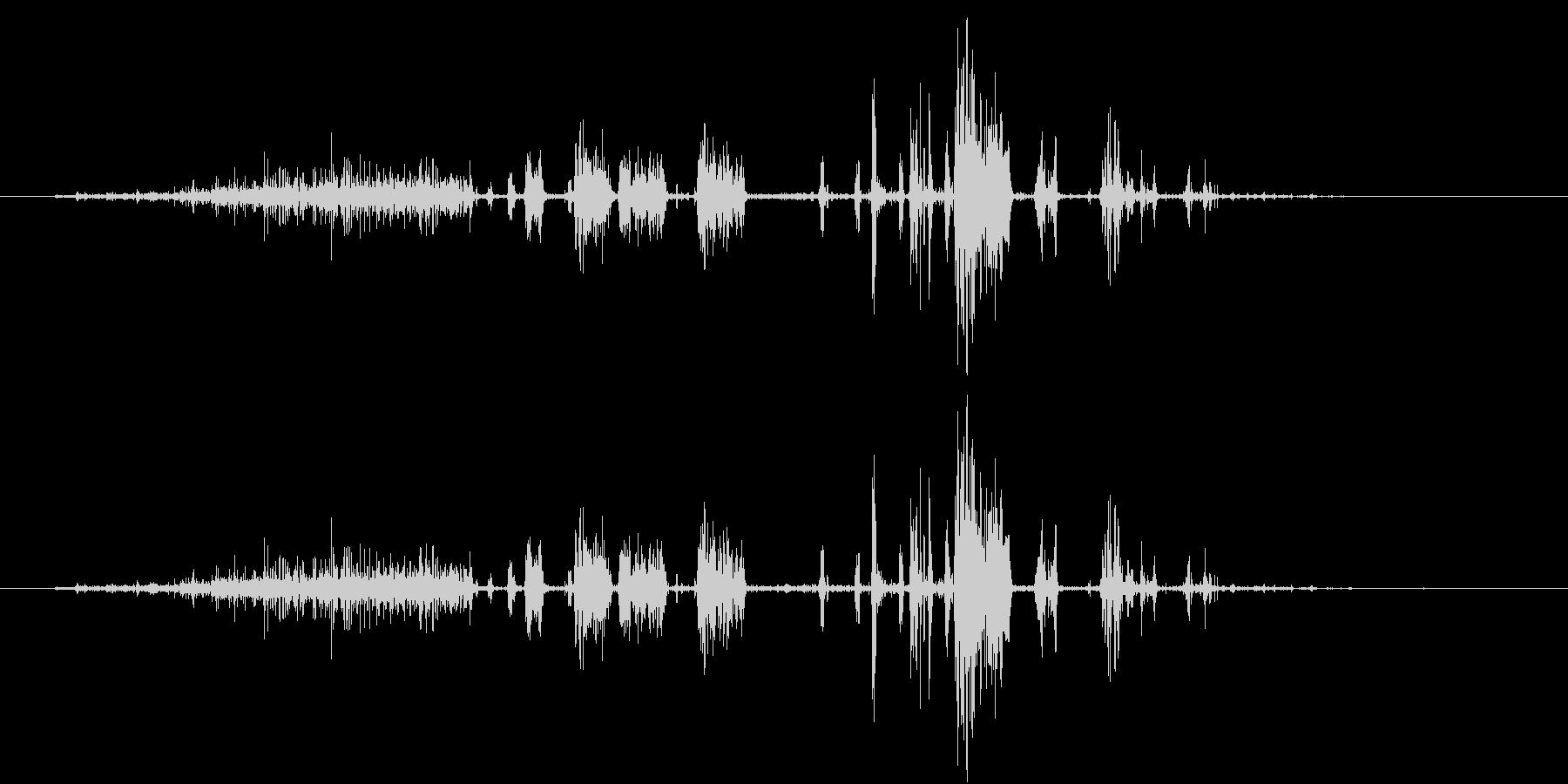 【生録音】シェービングフォームの泡の音の未再生の波形
