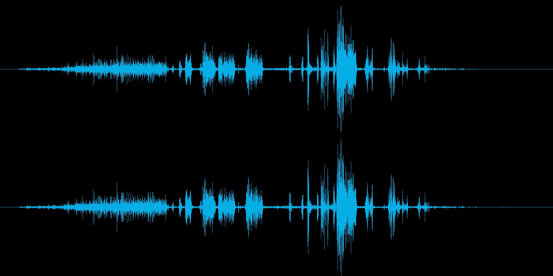 【生録音】シェービングフォームの泡の音の再生済みの波形
