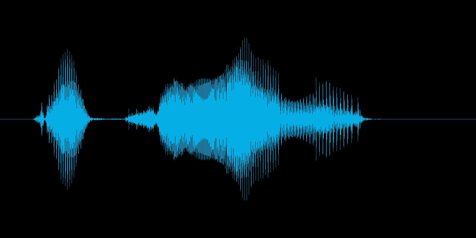 生き物の再生済みの波形