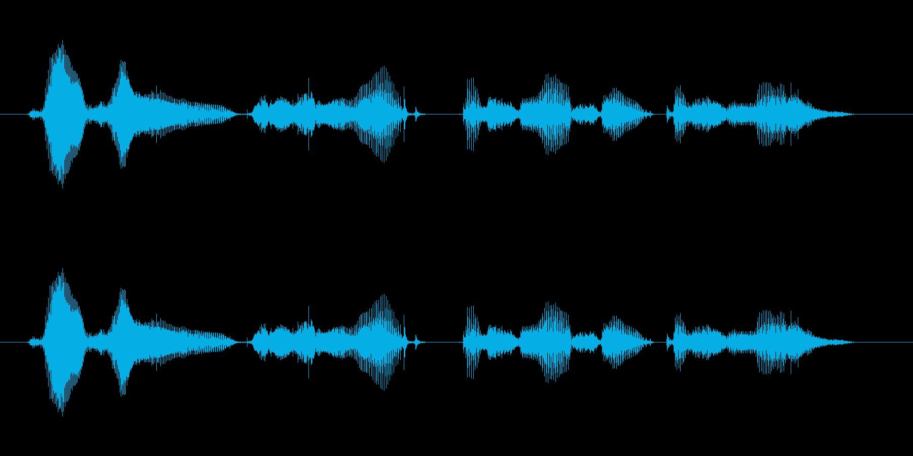 【時報・時間】午前1時を、お知らせいた…の再生済みの波形