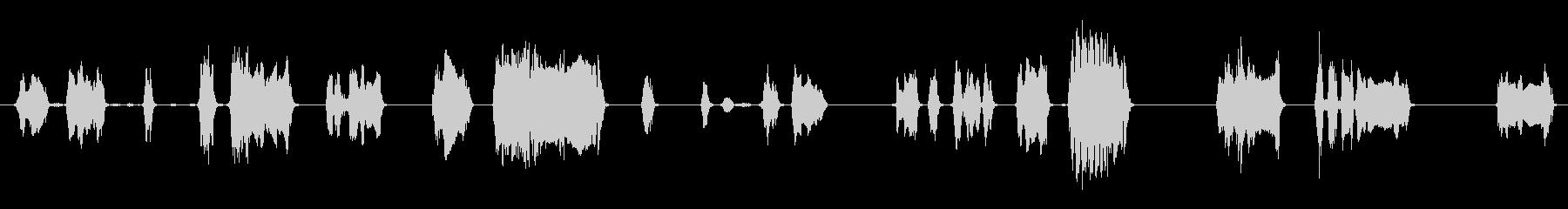 男性:おびえた悲鳴の未再生の波形
