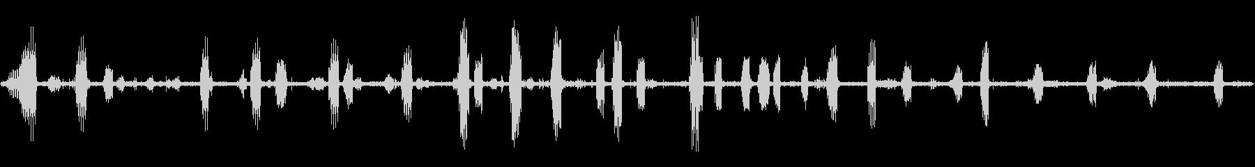 国の朝の鳥とカラスの未再生の波形