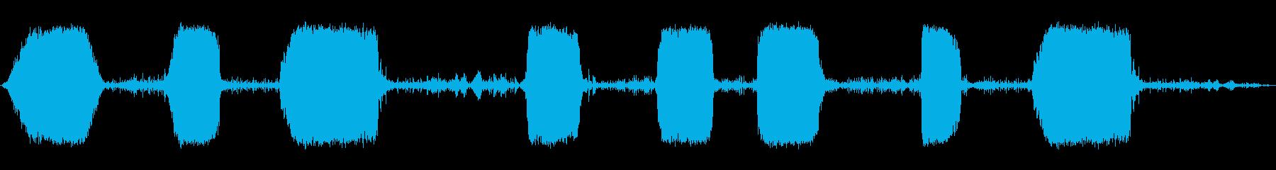スピニングメタルスクリーン、フォリーの再生済みの波形