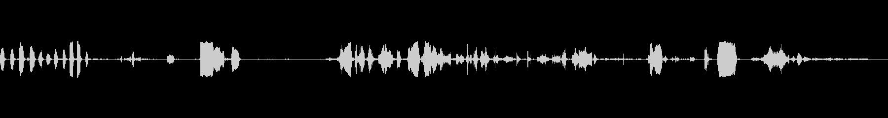 ハイピッチバーク&スクラム、動物、子犬の未再生の波形