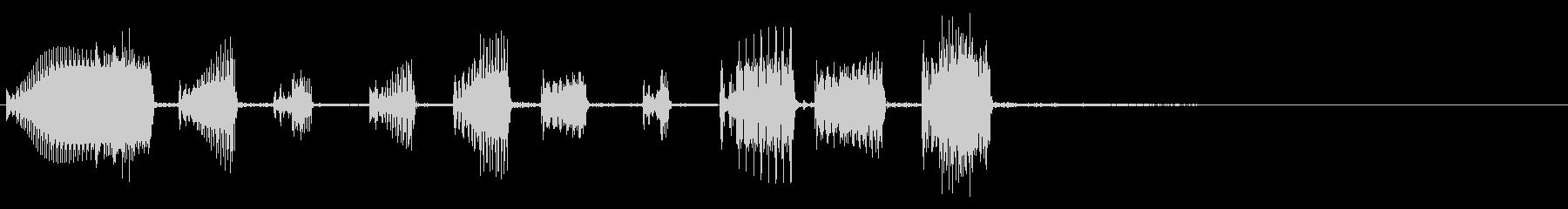 アコーデオン:ショートスタッカート...の未再生の波形