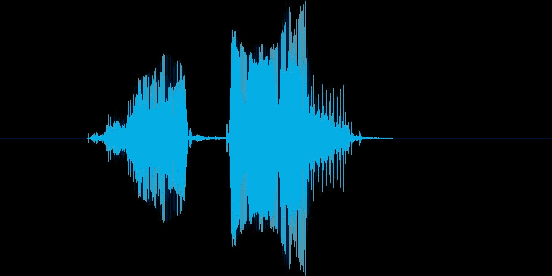 ツーペアの再生済みの波形