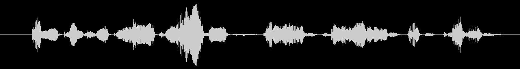 鳴き声 男性祈るラテン01の未再生の波形