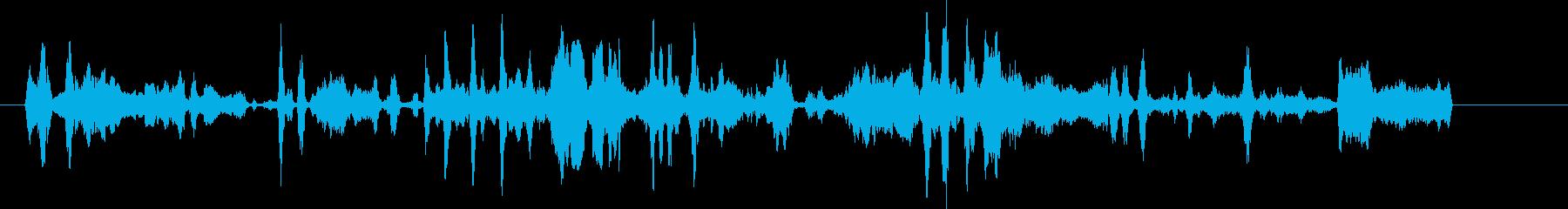 コヨーテハウル、バーク。グループの...の再生済みの波形