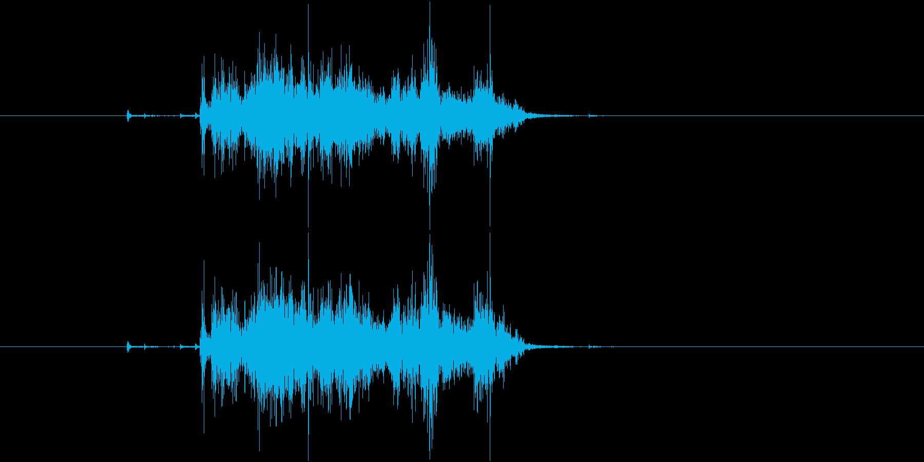 【生録音】Paper 紙を破く音の再生済みの波形