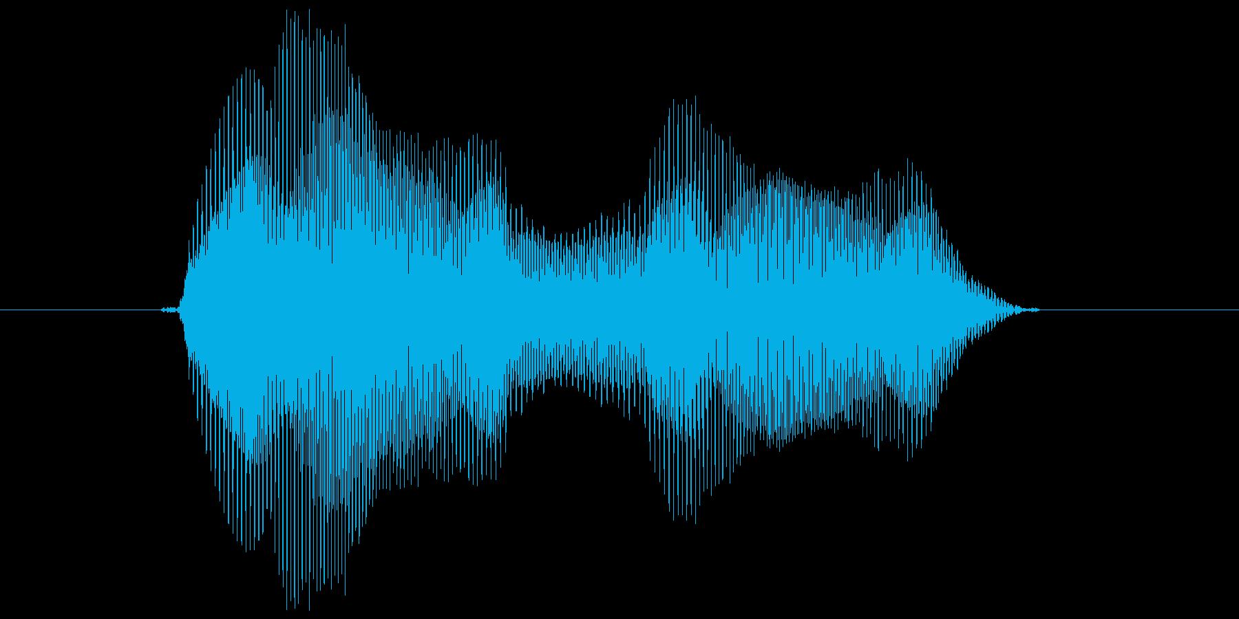 「ノー・ノー!」の再生済みの波形