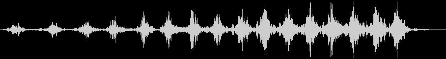 ローワーリングスワッシュ、フォリーの未再生の波形