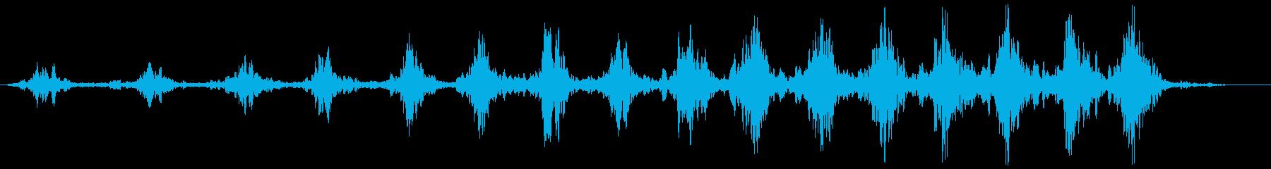 ローワーリングスワッシュ、フォリーの再生済みの波形