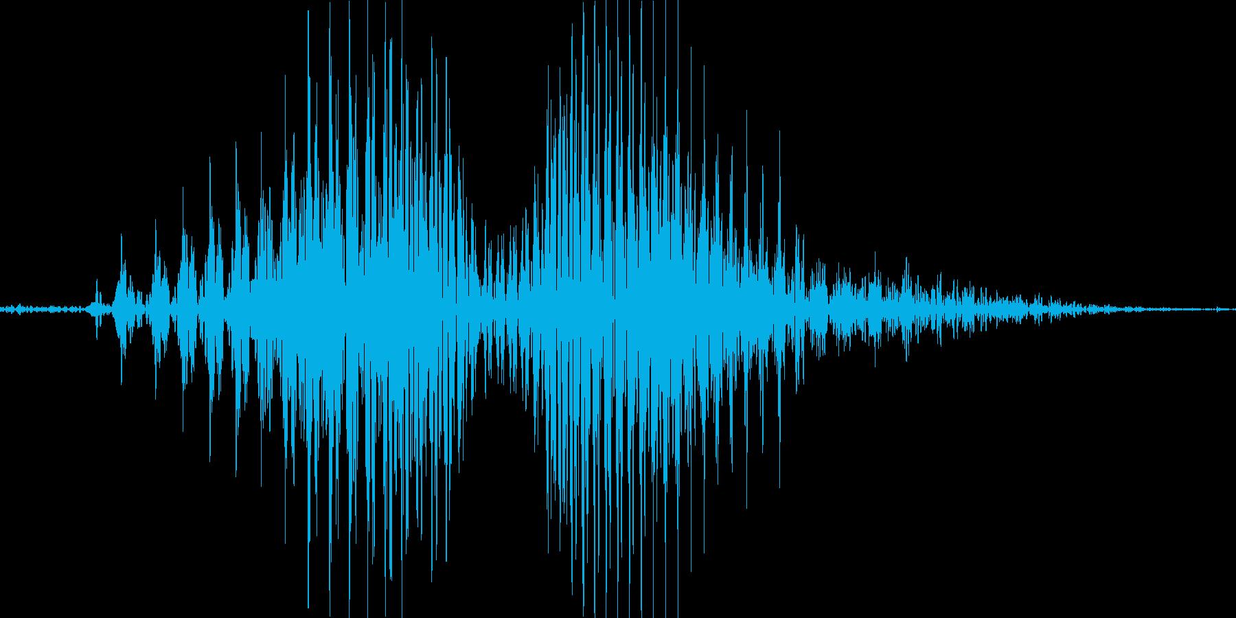 ほらっの再生済みの波形