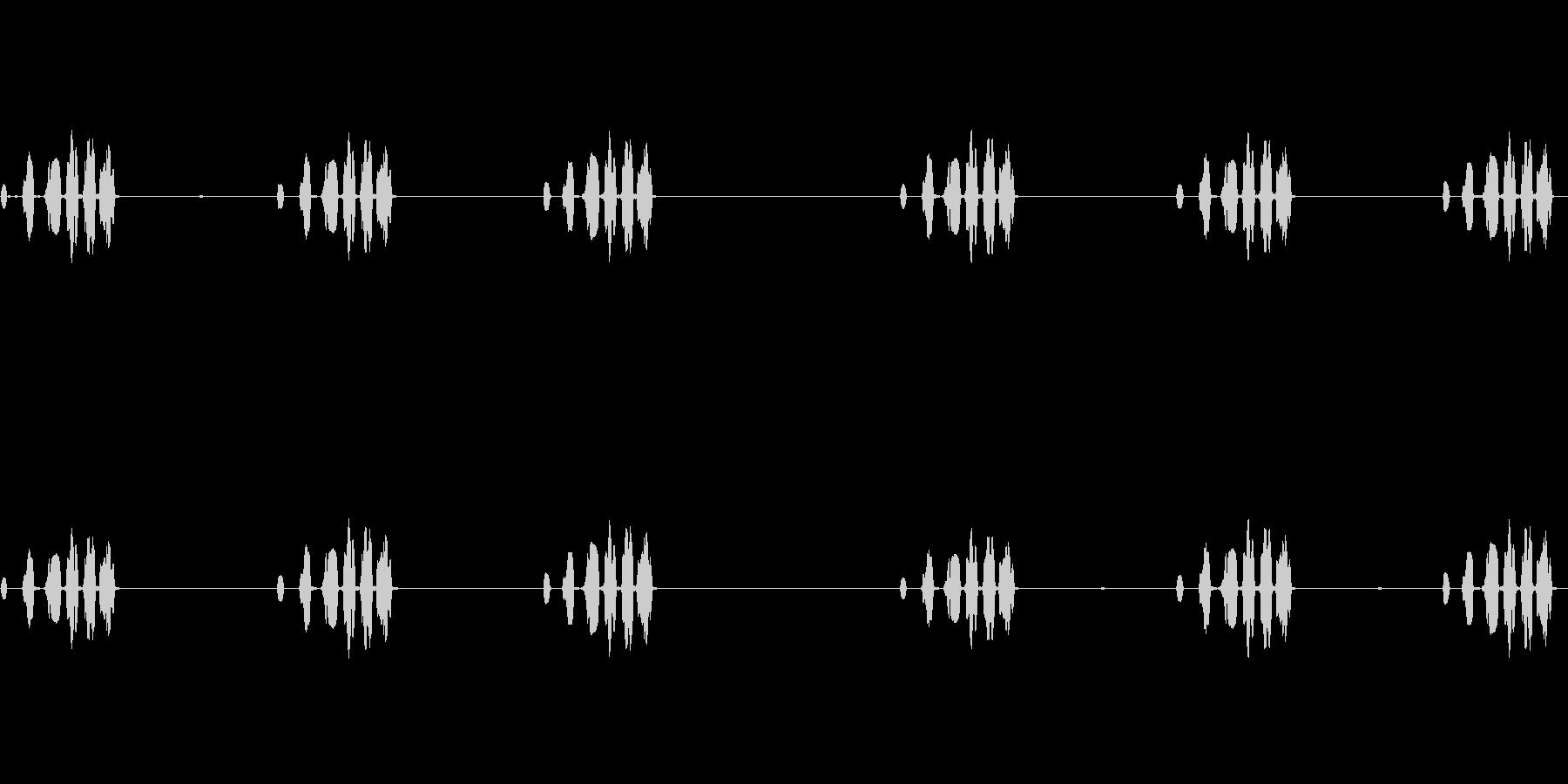 西部メドウラーク:一定の呼び出し、...の未再生の波形