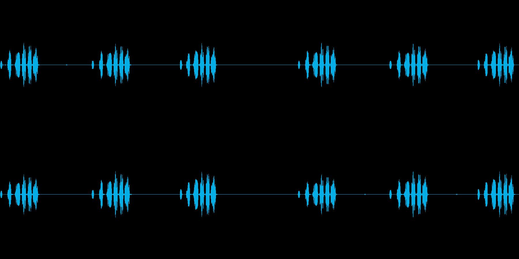 西部メドウラーク:一定の呼び出し、...の再生済みの波形