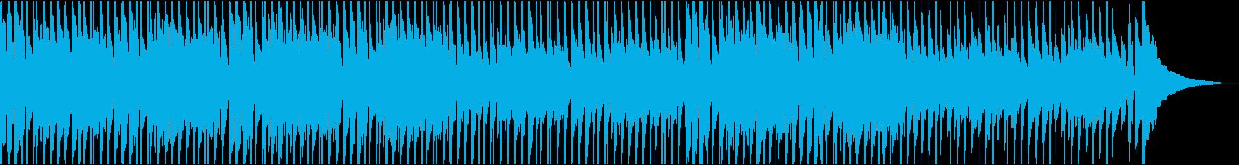 レゲエ スカし ブルース カントリ...の再生済みの波形
