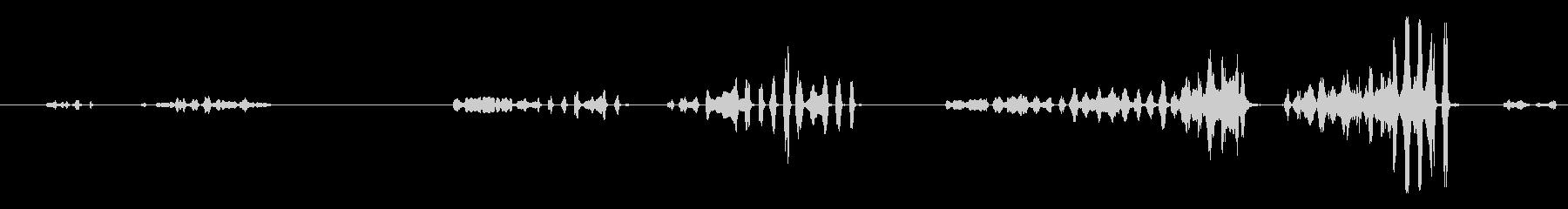鳴き声の未再生の波形