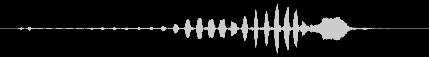 バードホイッスル:シングルハッピーコールの未再生の波形