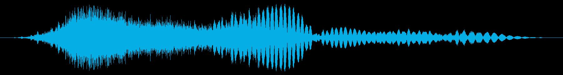 感電フーの再生済みの波形