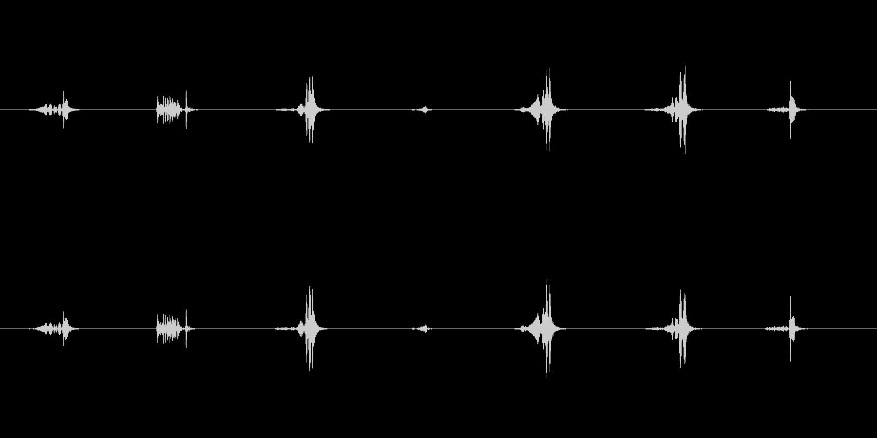 未熟なウグイスのさえずり Uguisu の未再生の波形