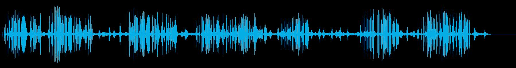 ゴールドフィンチ鳥の再生済みの波形