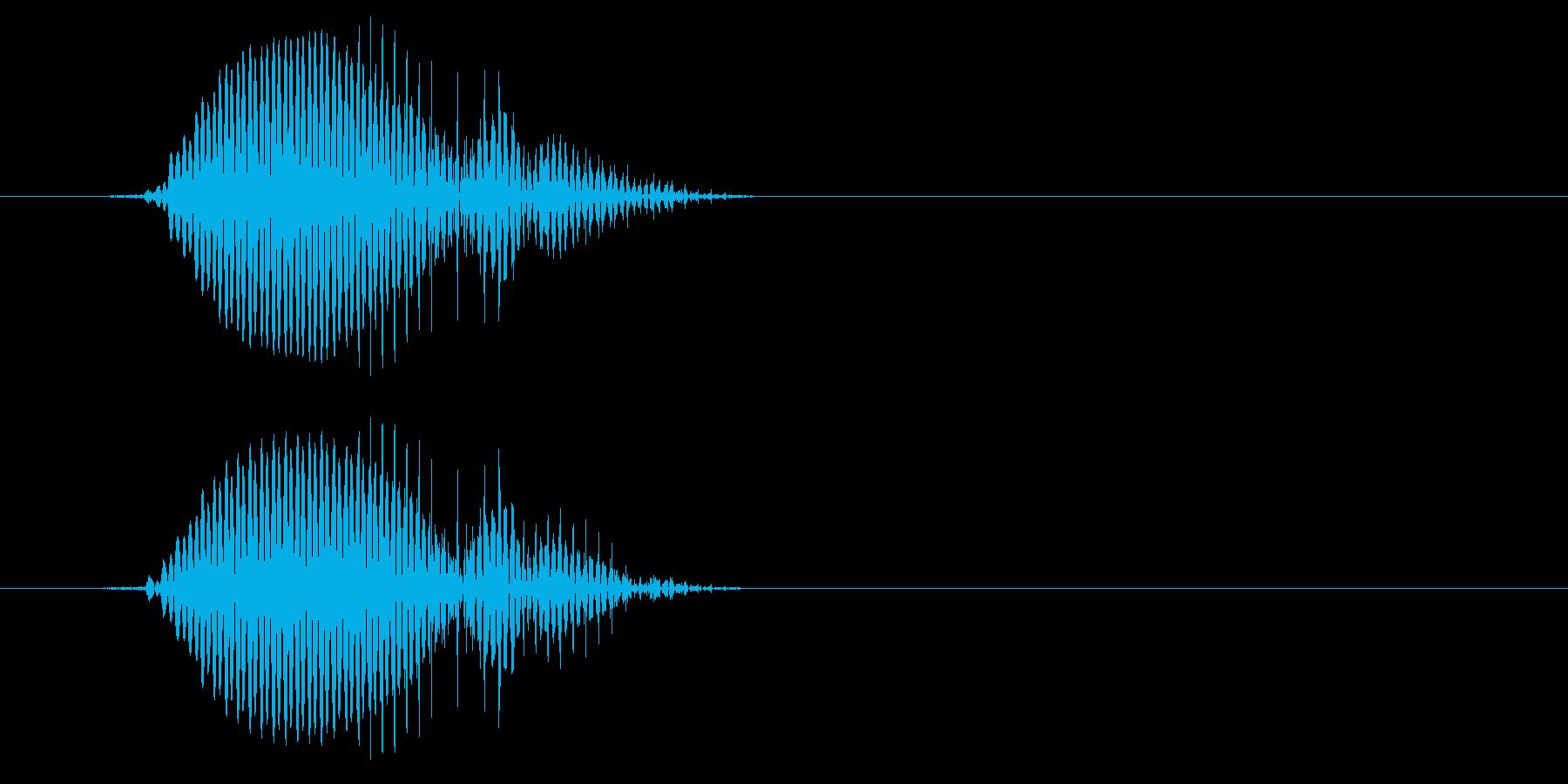 ペッ!(鳥の鳴き声の様な短い音)の再生済みの波形