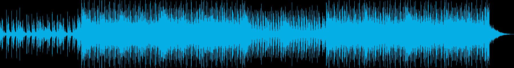ニュース番組 TV用 ハウスの再生済みの波形