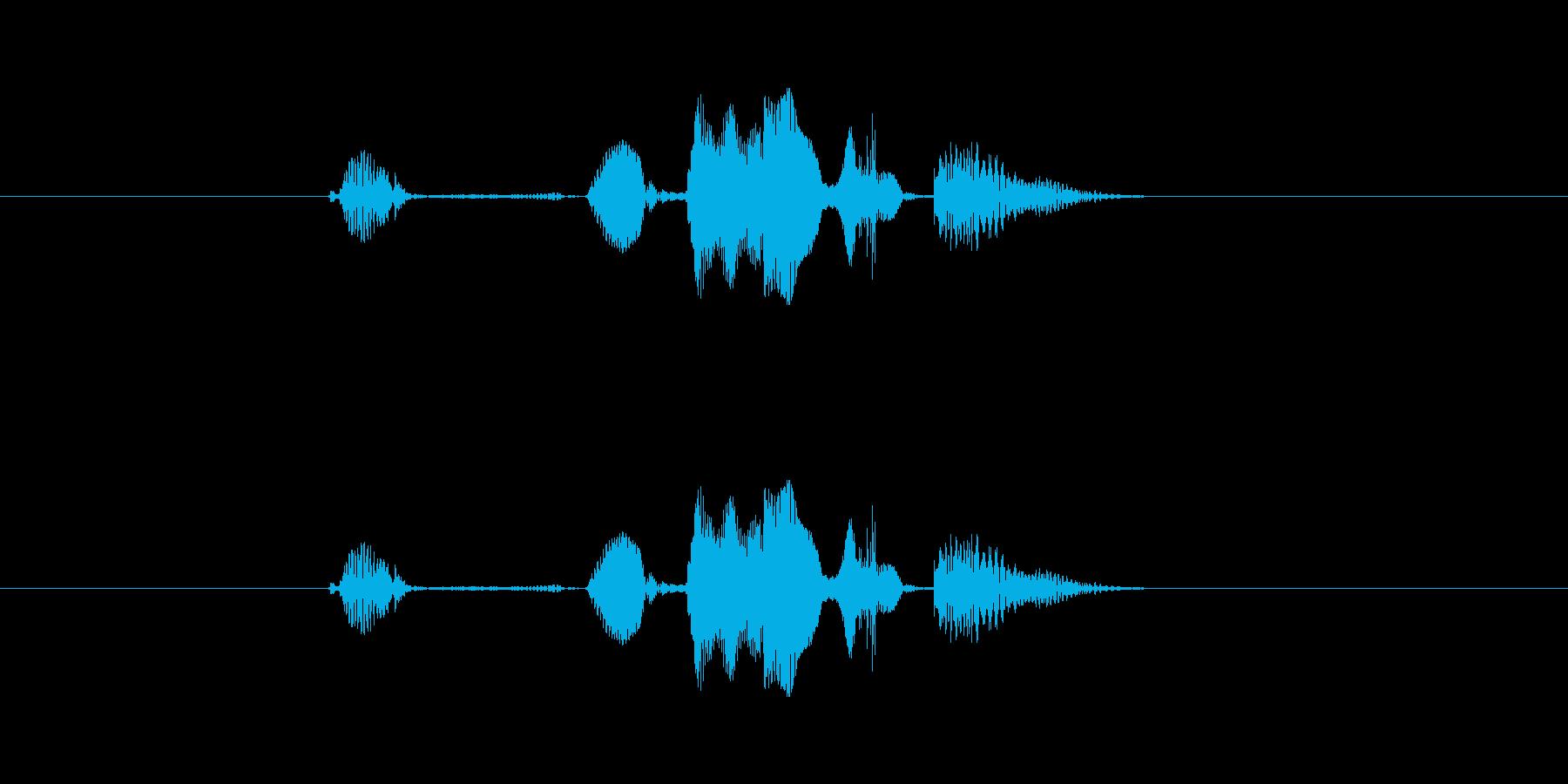 これ、どないなっとんねんの再生済みの波形