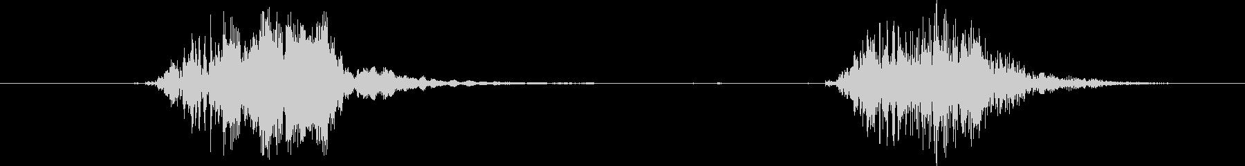 標準プードル:Int:2つの樹皮、犬の未再生の波形