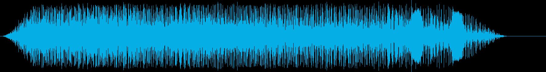 サンフェルミン拍手およびその他の再生済みの波形