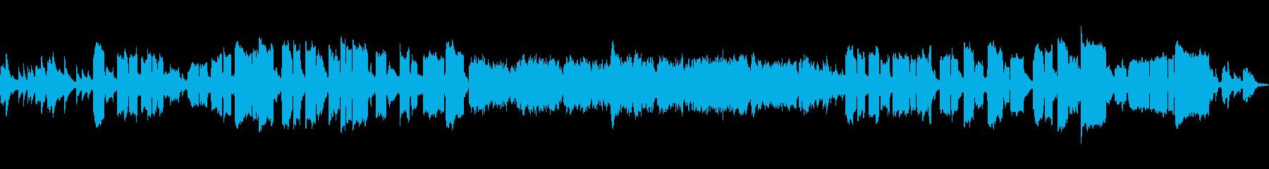 しんみりした感じの生リコーダーソロ曲の再生済みの波形