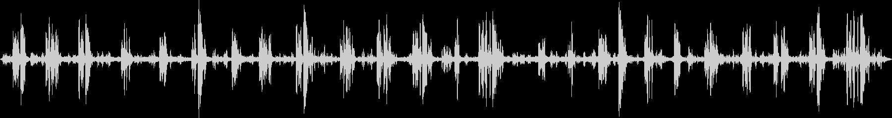 ミドルスルー、バード; DIGIF...の未再生の波形